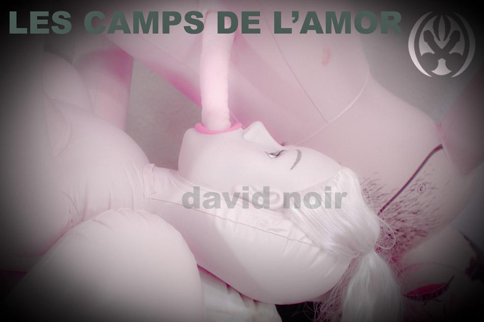 David Noir - Les camps de l'Amor